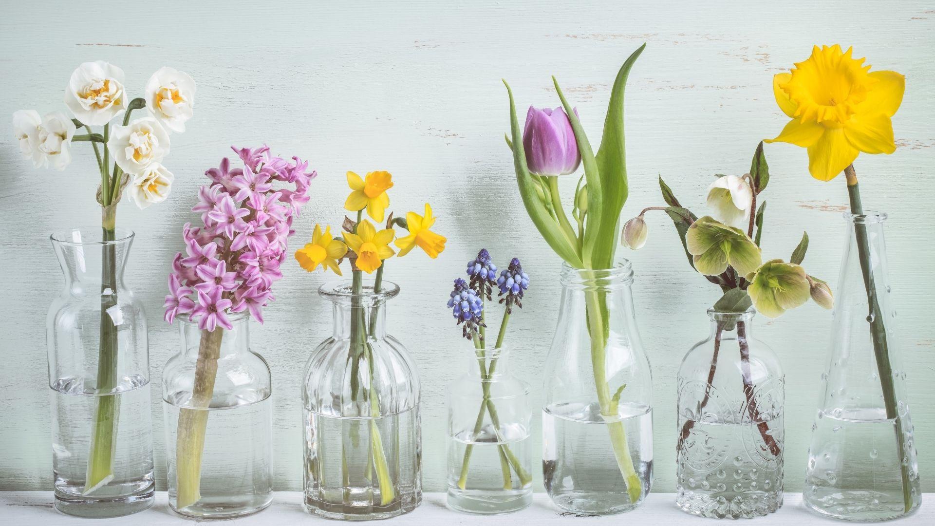 Primavera e Vini: gli abbinamenti perfetti